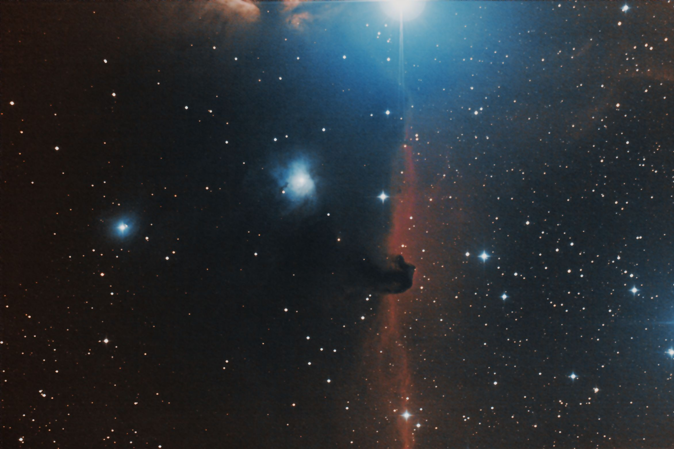 IC434, Paarde kop nevel,Orion